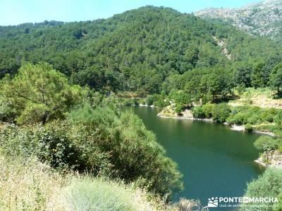 Pinares Angostura, Piedralaves; senderismo y montaña;senderos madrid;excursiones senderismo